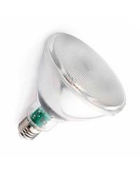 Lampadina LED PAR38 E27 10W 850LM 4000K