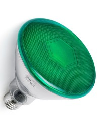 Lampadina LED E27 PAR38 10W 850lm 4000K Verde