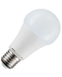Lampadine LED E27 standard 11W 806lm 3000K 270º