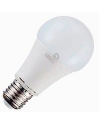 Lampadina LED 12V Standard 11W 806LM 6000K 270º